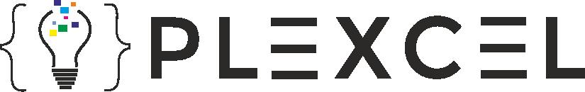 PLEXCEL INFO SYSTEMS PVT LTD
